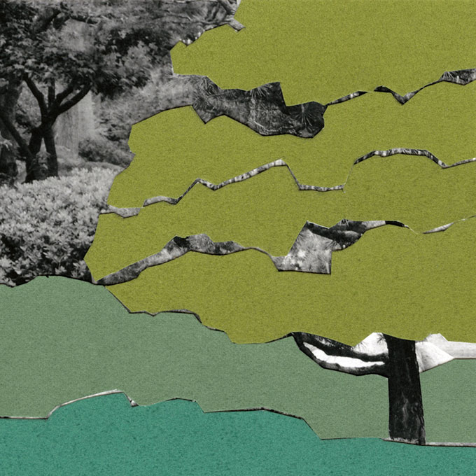 Cathy Ryan Screen Prints